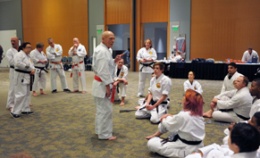 Hanshi_teaching image